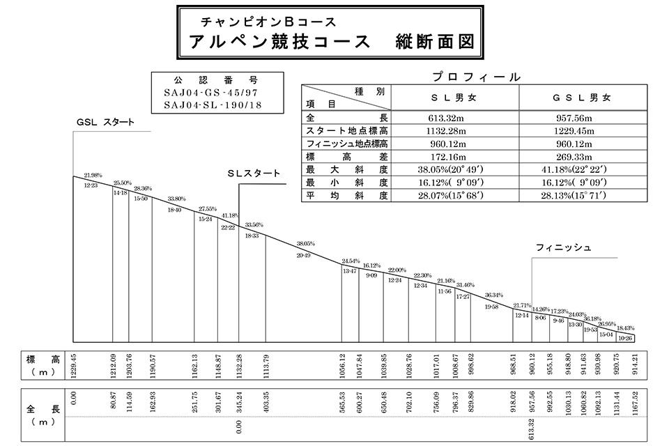 チャンピオンBコース アルペン競技コース 縦断面図